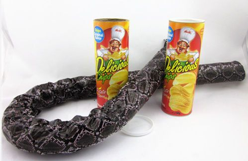 Box of crisps with faux snake spring