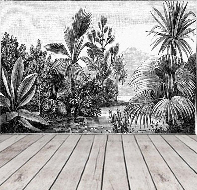 Black and White Jungle Wallpaper Rainforest, Landscape