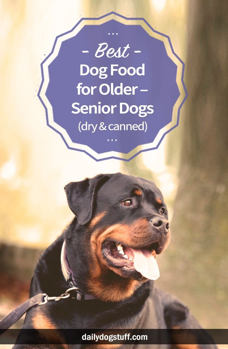 Best dog food for older senior dogs dry canned