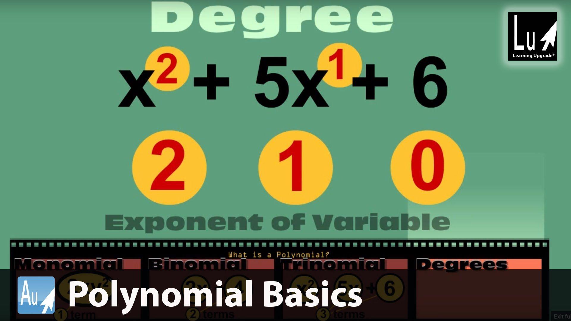 Polynomial Basics Learn Algebra Learning Upgrade