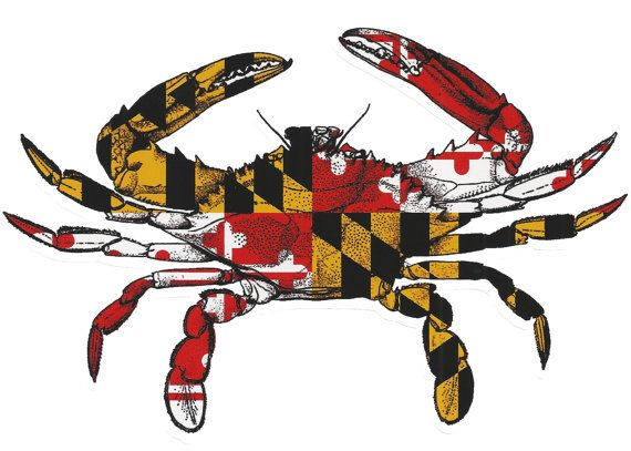Maryland crab vinyl window decal long lasting md by homegamers 5 99