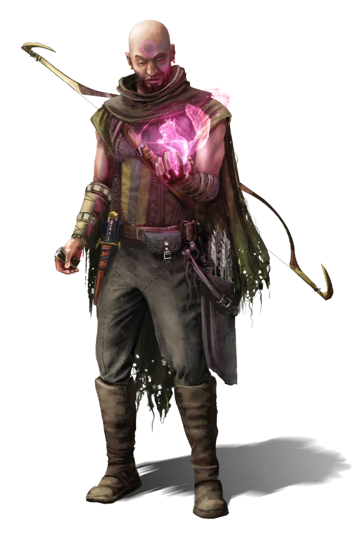 Male Human Ranger with Animal Spirit - Pathfinder PFRPG DND D&D d20 fantasy  | Archer characters, Rpg character, Dnd characters