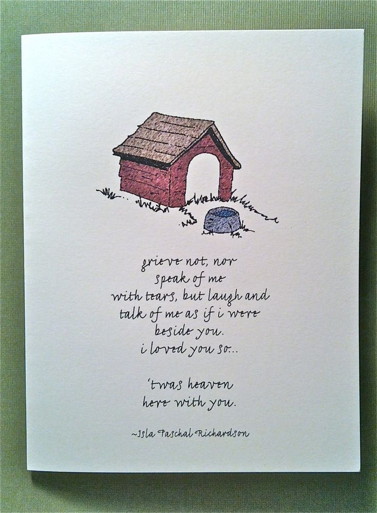 pet loss grief quotes Google Search Pet loss grief