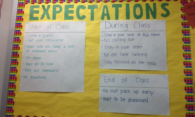 Everybody is a Genius: Classroom Expectations