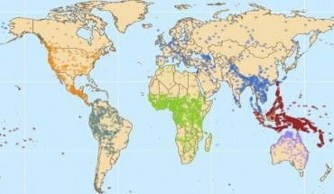 Geographic distribution of the 6,452 word lists analyzed in this study. Colors distinguish different linguistic macroareas, regions with relatively little or no contact between them (but with much internal contact between their populations). These are North America (orange), South America (dark green), Eurasia (blue), Africa (green), Papua New Guinea and the Pacific Islands (red), and Australia (fuchsia). Image credit: Damián E. Blasi et al.