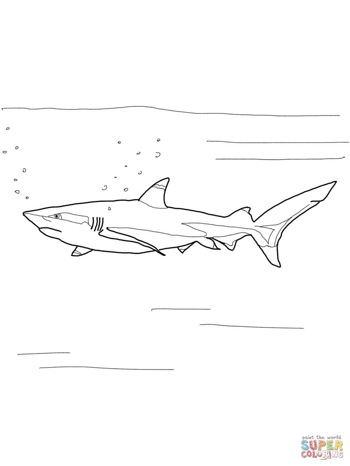 Blacktip Reef Shark Shark Coloring Pages Reef Shark Coloring Pages