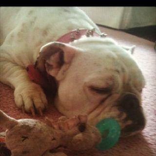 The binky puts Bentley to sleep too:)