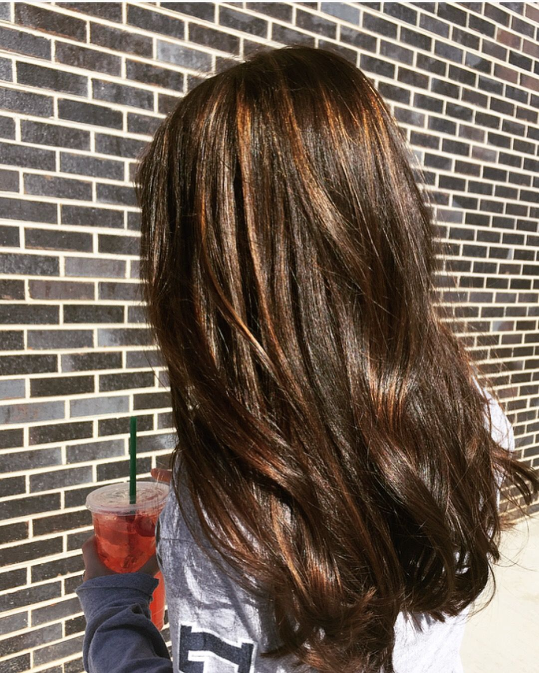 Dark Brown Hair Highlights Hair By Linda Plummer In Short Pump
