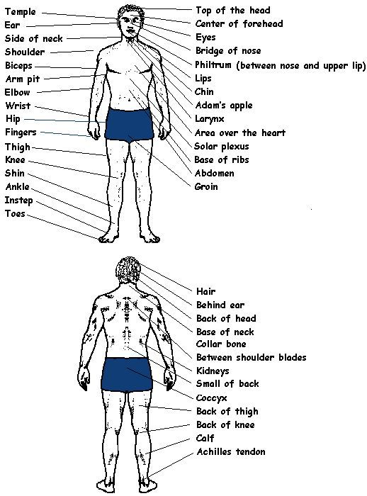 Pin by skaht rapalee on kombat arts pinterest pressure points ccuart Images