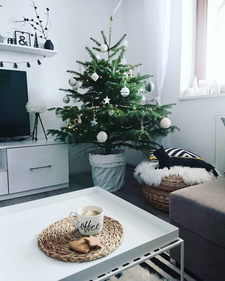 How to Make Your Small Apartment Living Room More Cozy on Budget? Check This Great Sample - Vivelavi Blog #smallapartmentchristmasdecor