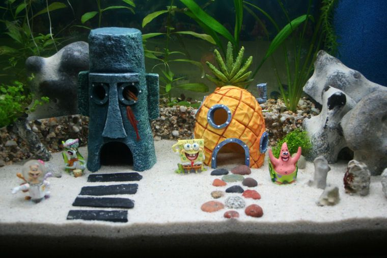 How To Decorate Your Boring Fish Tank Spongebob Fish Tank Fish Tank Decorations Cool Fish Tanks