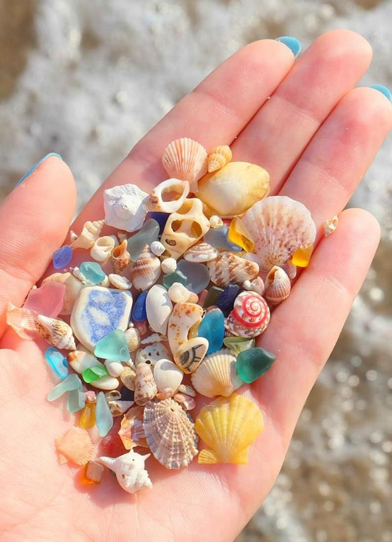 Beach Gifts for Mom Birthday Gifts for Her Gift for Woman Gift for Wife Grandma Sea Shell Jewelry Shell Necklace Unique Gift for women