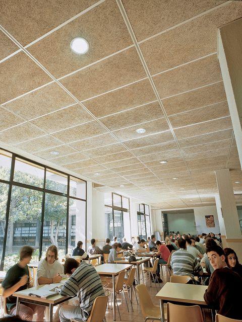 Celenit aislante termoac stico natural para falsos techos - Revestimientos para techos ...