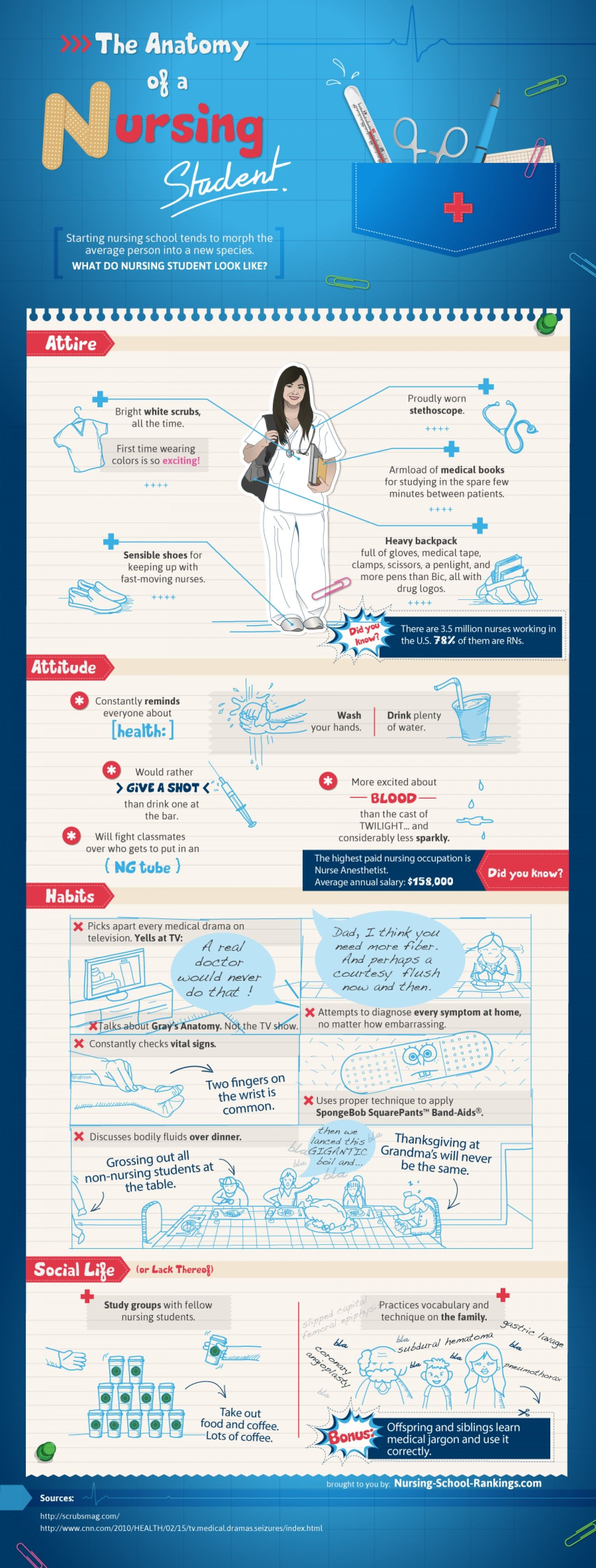 the anatomy of a nursing student  infographic