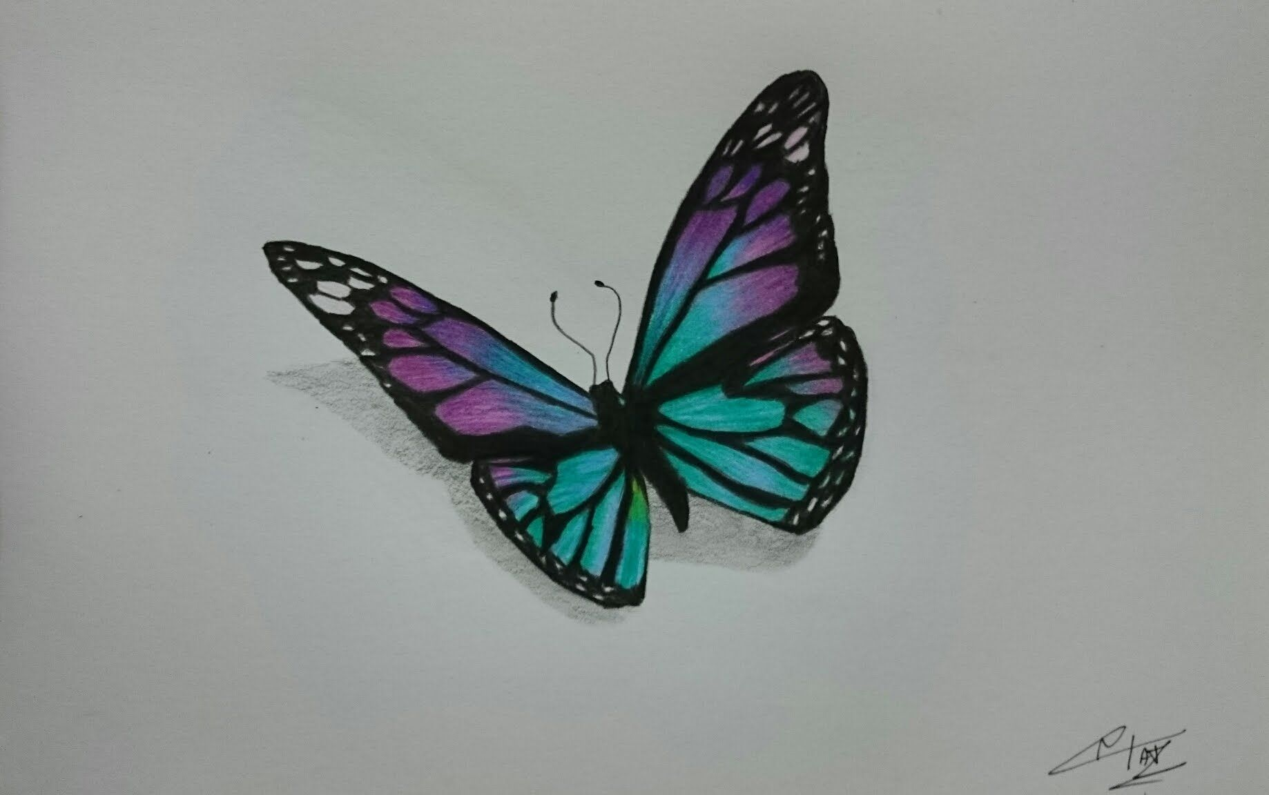 This Is My First Timelapse Drawing Video Hope You Like It I Draw This Butterfly With Faber Castell Classic Butterfly Drawing Flower Drawing Colorful Drawings