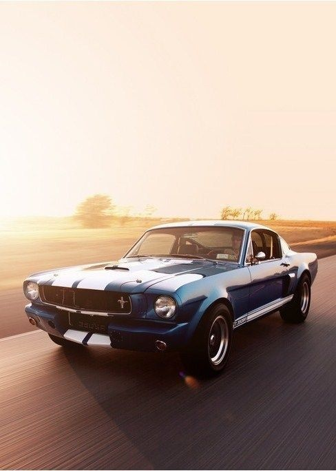 Has always been my first love in old cars. I love mustangs. I love to drive fast…