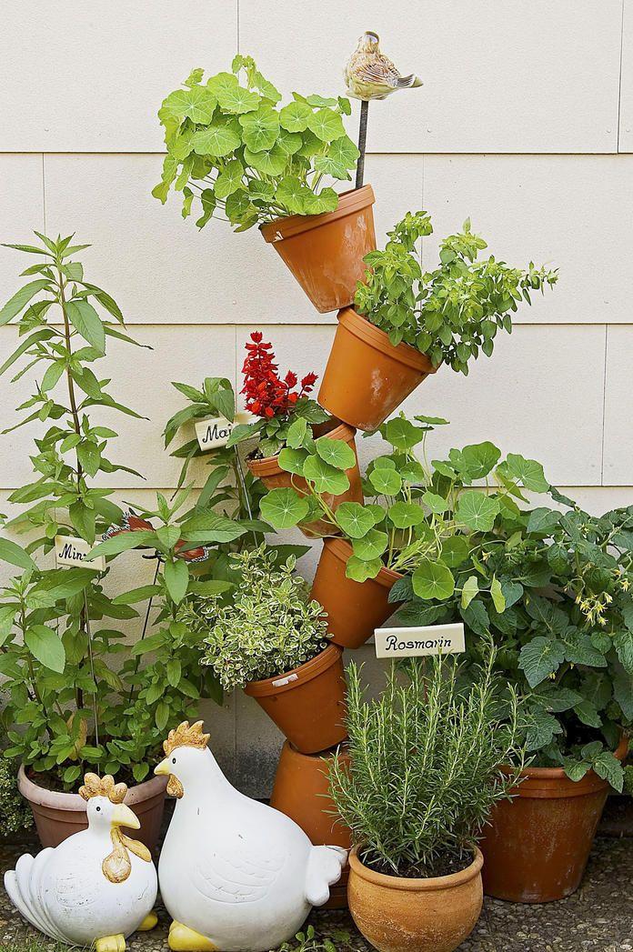Kräutergarten: Würze aus eigenem Anbau