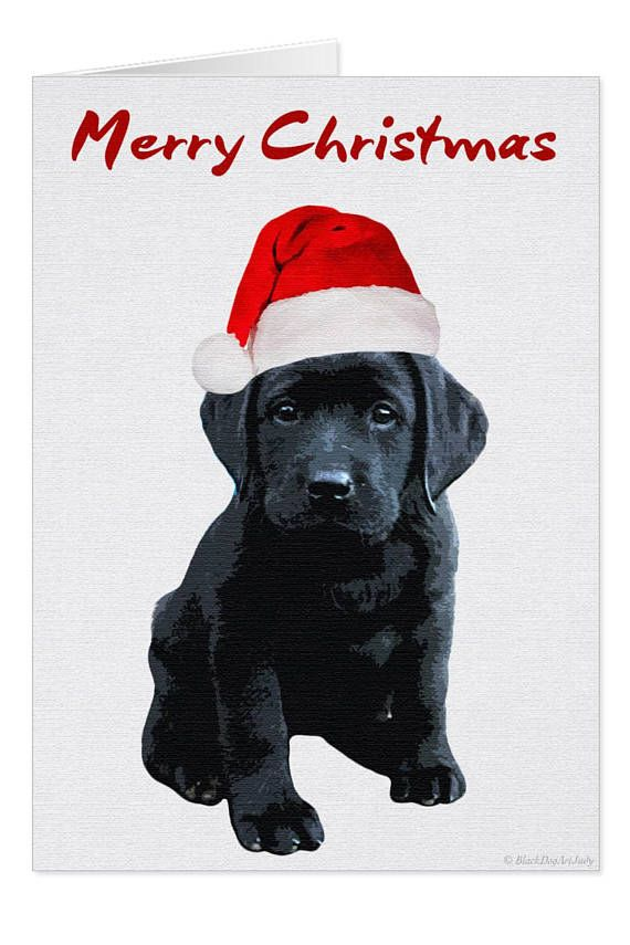 Black Lab Christmas Card D10BLCAR - Labrador Christmas - Black Lab ...