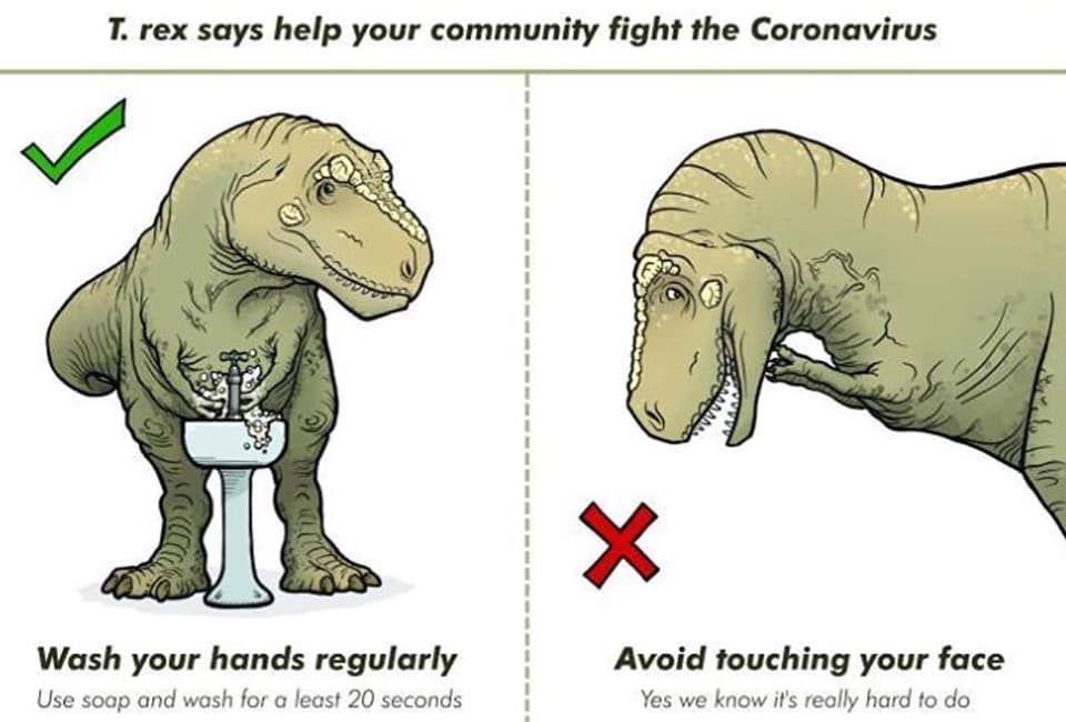 Pin By Renzoquero On Memes Jurasicos Dinosaur Funny Dinosaur Meme Dinosaur