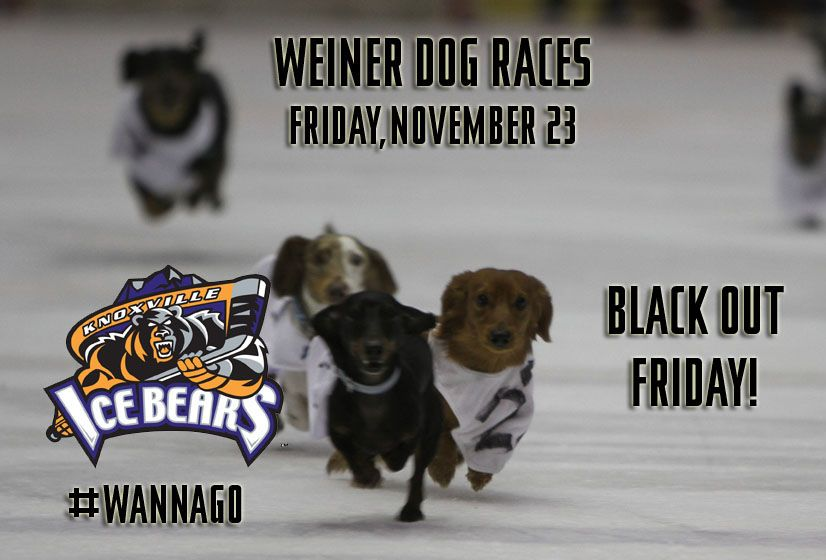 Knoxville Ice Bears Weiner Dog Races Weiner Dog Ice Bears