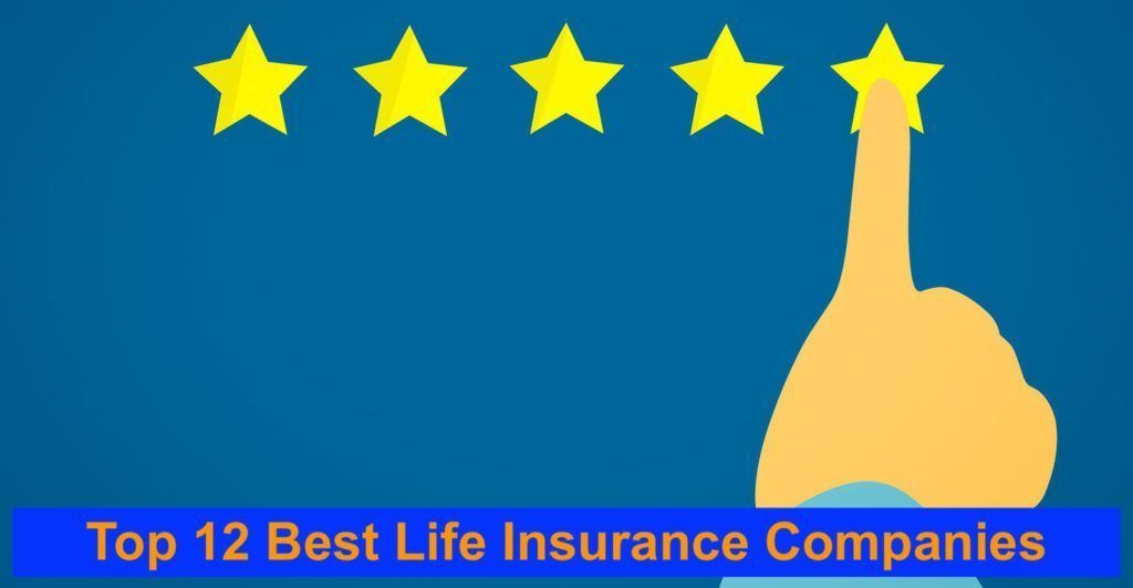 Best Life Insurance Companies The Top 12 Best In America Best Life Insurance Companies Life Insurance Companies Best Term Life Insurance