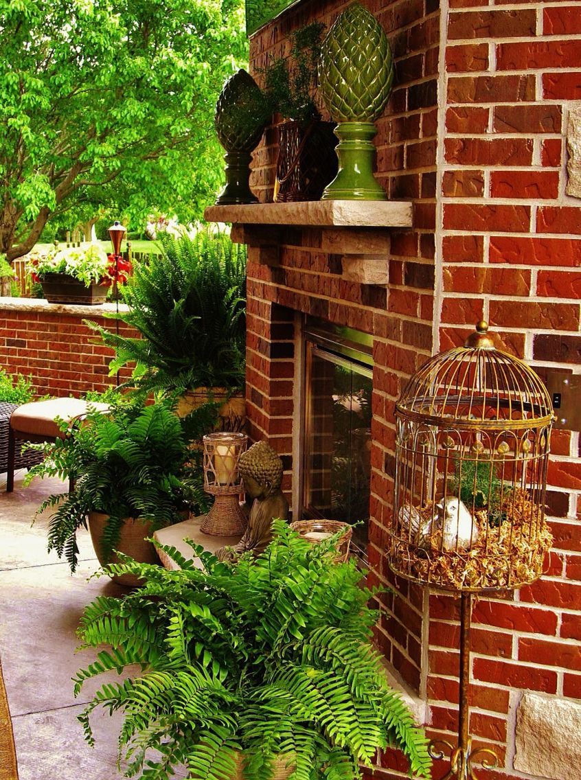 Using simple plants like ferns iAds so much texture/drama to any ...