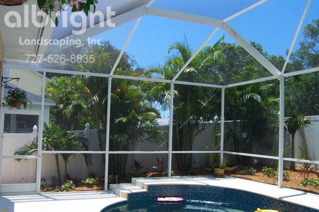 Areca Palms For Pool Privacy Landscape Services Landscape Projects Pool Landscaping
