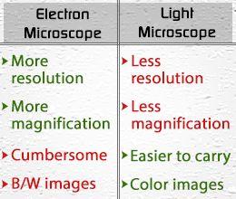cost of light microscope
