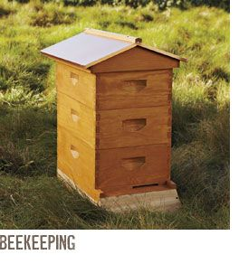 A Warre Beehive! This Is What We Hope To Have In Our Backyard In The