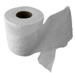 30 Ways to Reuse Toilet Paper Rolls | Toilet paper rolls, Paper ...