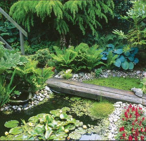 Garden Design Styles | Pinterest | Small garden ponds, Garden pond ...