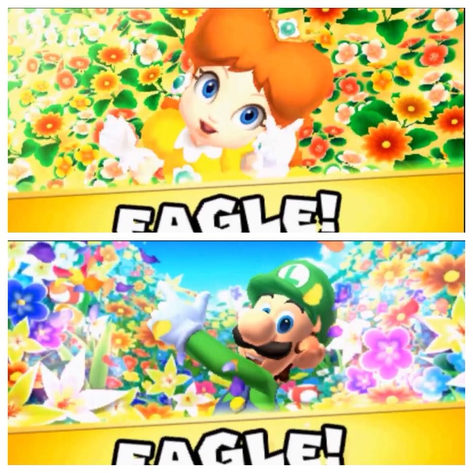 Funny Fact Both Luigi And Daisy Have A Flower Field In Their Eagle