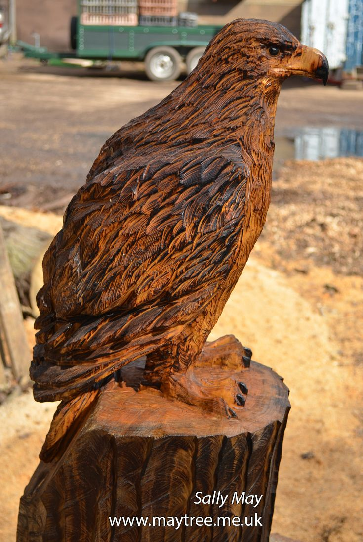 Golden eagle chainsaw carving by sally may tree carvings