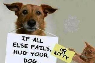 Se tutto il resto fallisce, abbracciate il vostro cane o il vostro gattino