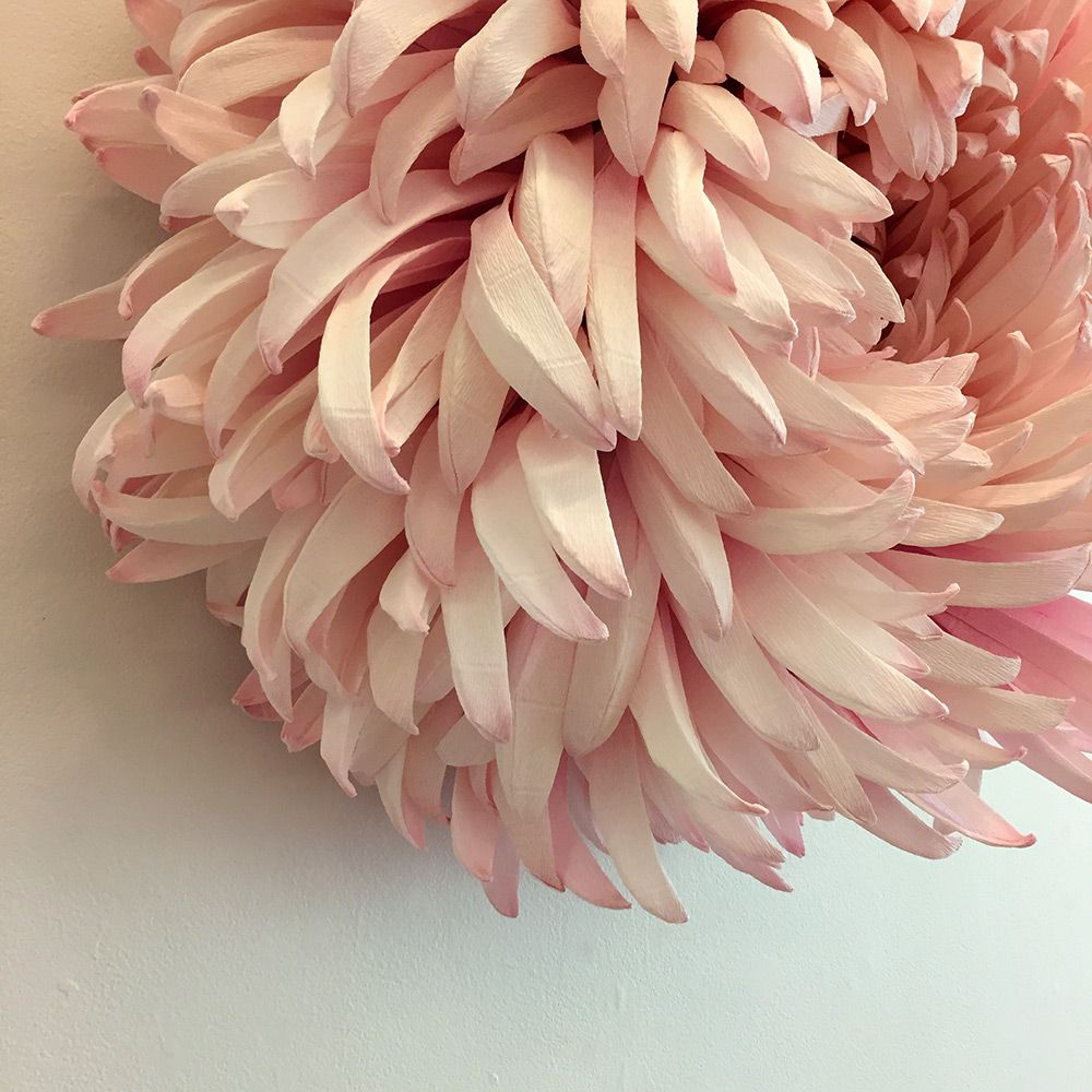 New Giant Paper Flower Sculptures By Tiffanie Turner Wow Great