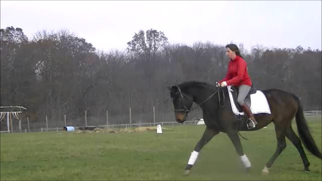 Danee Rudy on Indy, Appaloosa/TB. Starting a lengthened trot.