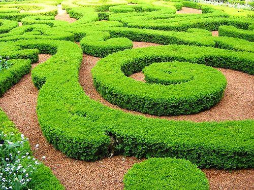 Jardin  français French Garden