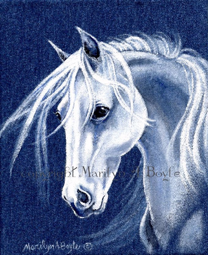 Original Acrylic Painting White Horse Head On Denim Stretched