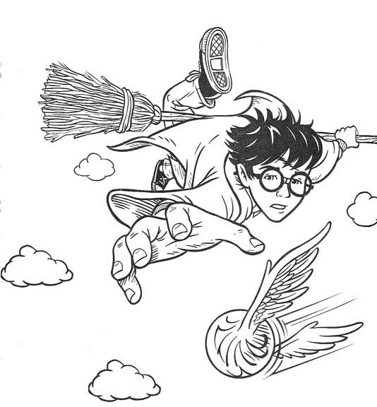 Free Harry Potter Coloring Pages Quidditch Coloring