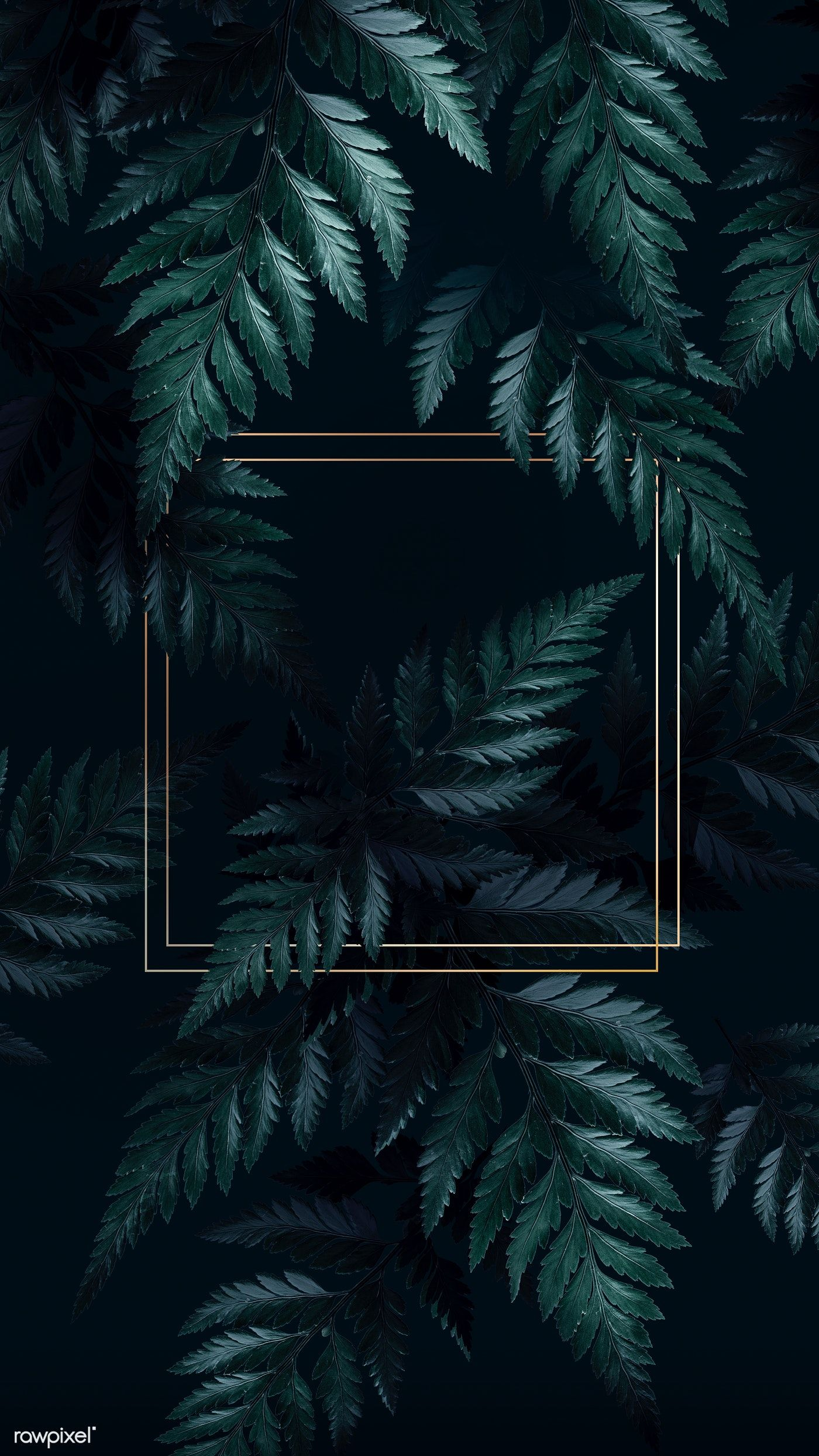 Download Premium Illustration Of Square Golden Frame On A Tropical Tropical Background Phone Wallpaper Images Tropical Wallpaper