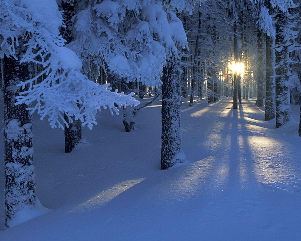 Красивые зимние картинки (32 фото) | Зимние картинки ...