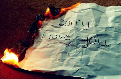 I'm Sorry... I love you