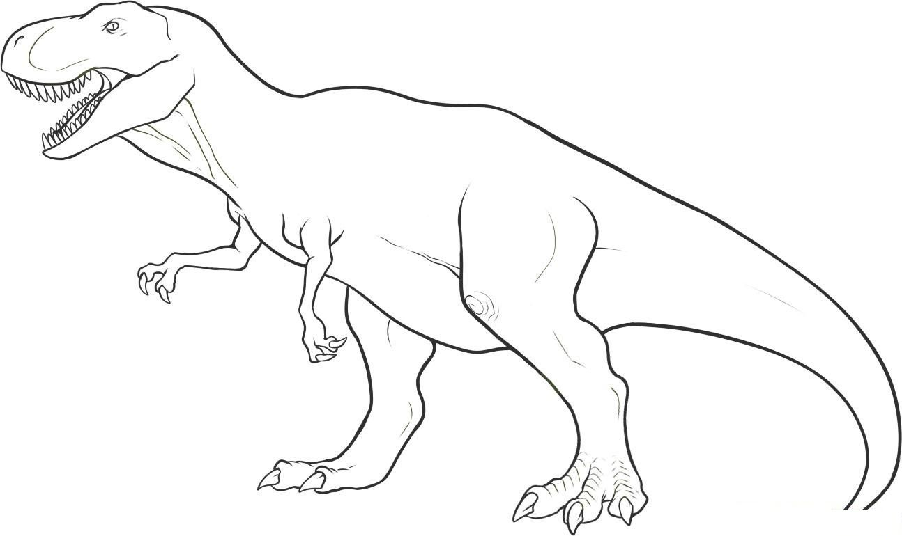 Clip Art Dinosaur Outline Coloring Pages dinosaur outline coloring pages eassume com eassume