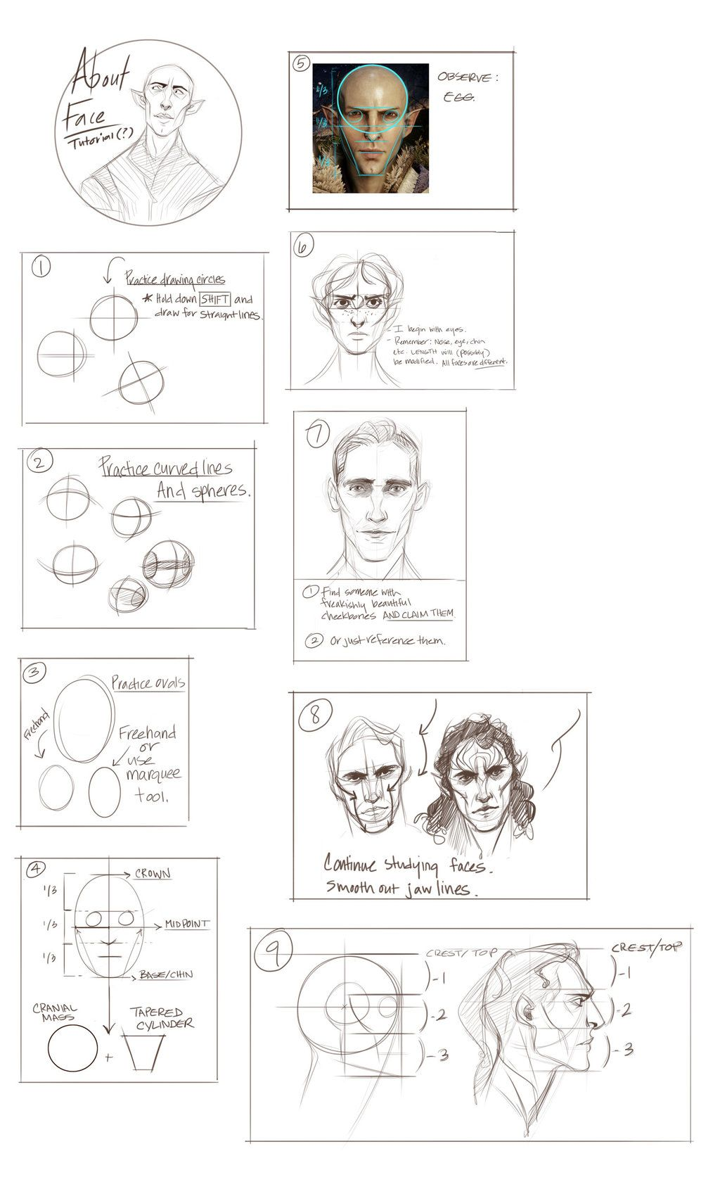 Face Proportions Jawline And Chin Face Proportions Comic Tutorial Book Drawing