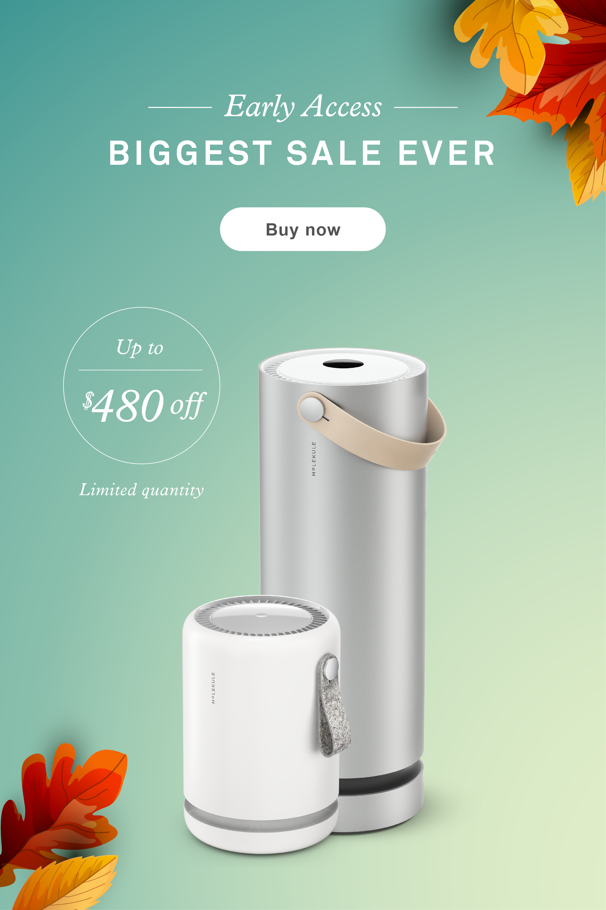Save big this holiday season with Molekule's biggest sale