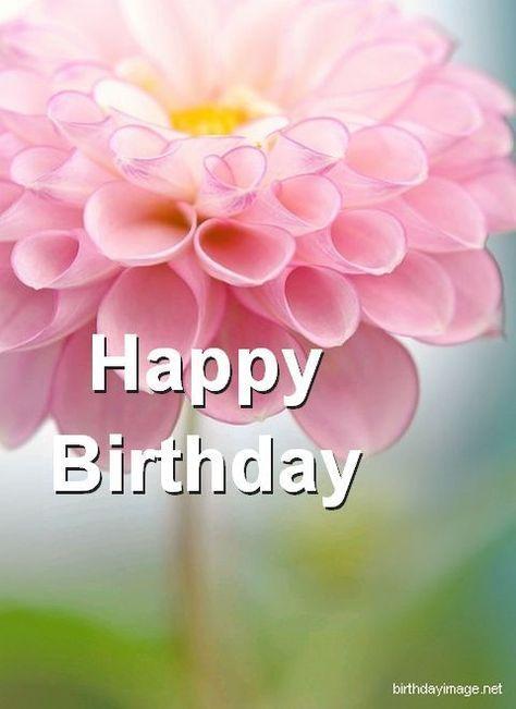 Citaten Verjaardag : Pin by sylvia martinot on verjaardag verjaardagskaarten