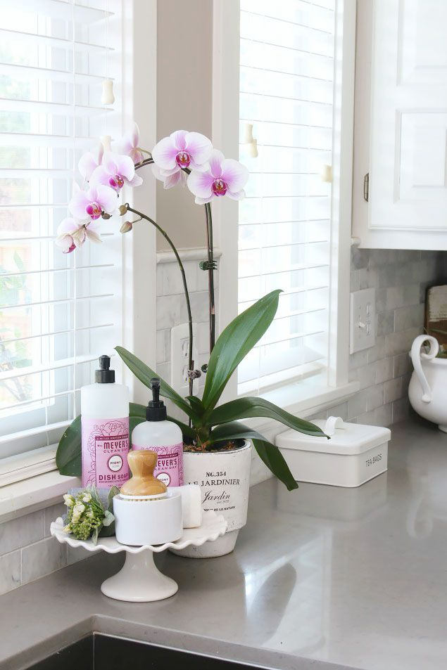How to Keep Kitchen Counters Clutter-Free - Clean and Scentsible