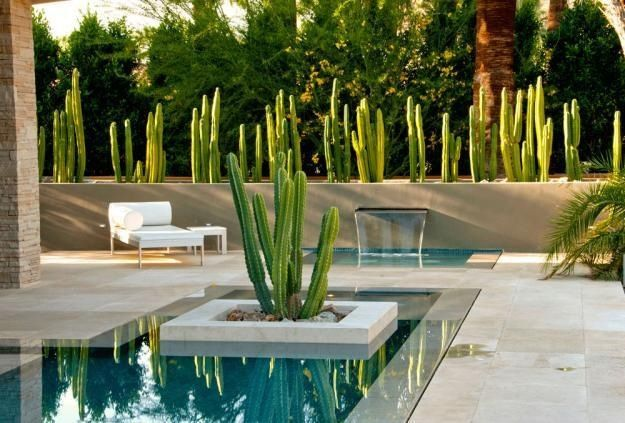 Décoration de jardin moderne avec bassin aquatique | Cactus ...