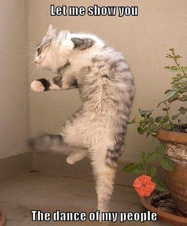 Dance Of My People