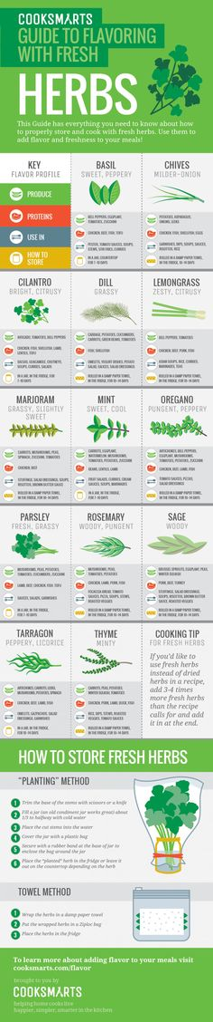 Everything you need to know about how to properly store and cook with herbs by Cook Smarts via @therealvisually
